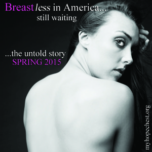 Breastless in america 2X2 LOGO